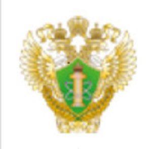 ООО СТС, Таганрог